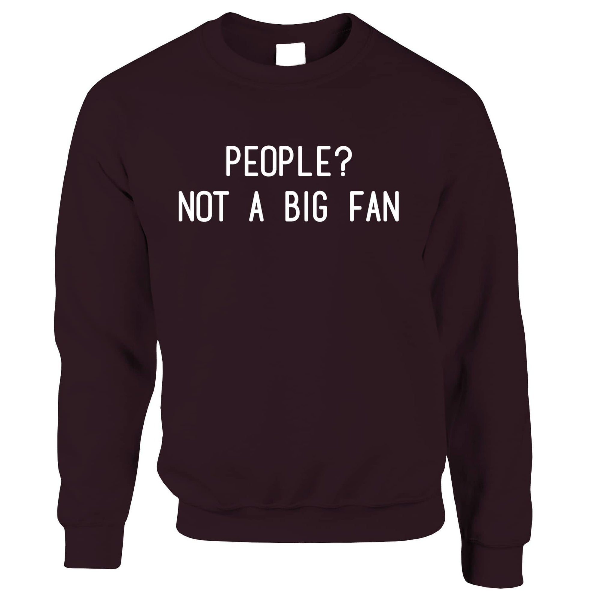 Awkward Joke Jumper People? Not A Big Fan Slogan Sweatshirt Sweater