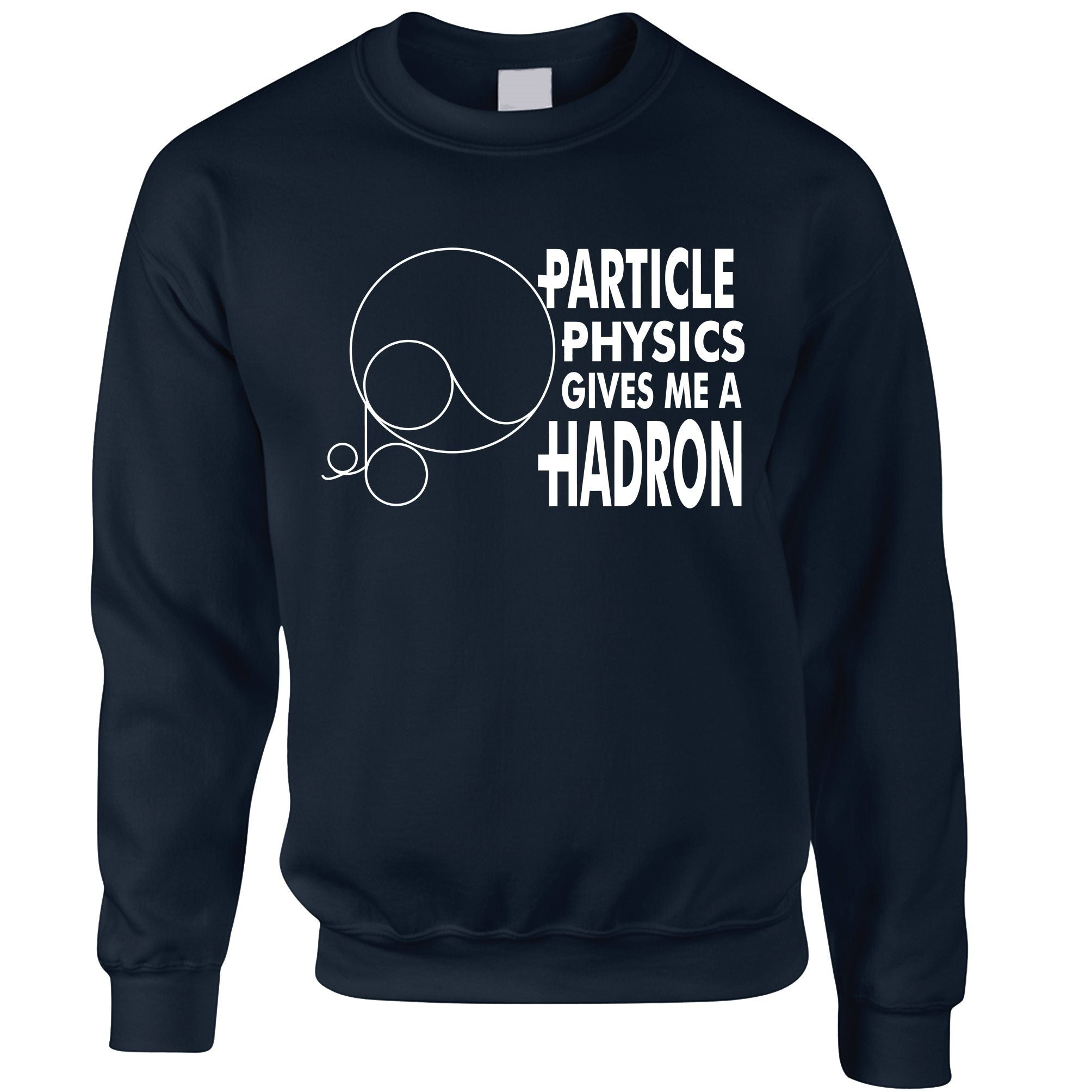 Rude Nerdy Jumper Particle Physics Gives Me A Hadron Sweatshirt Sweater