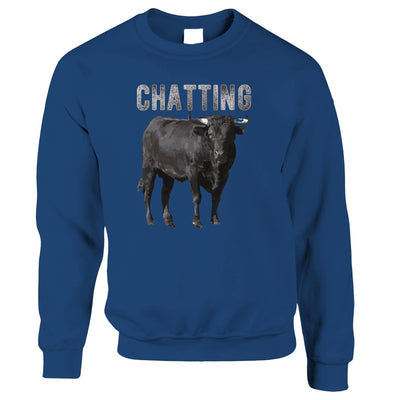 Bull Ox Jumper Chatting Bullocks Joke Sweatshirt Sweater