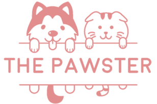 THE PAWSTER