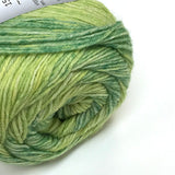 Supersocke 6-ply Quebec Color