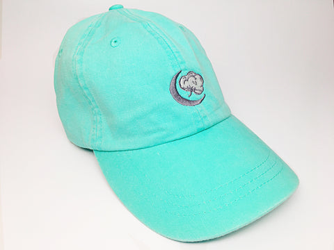 Sea Foam Logo Hat