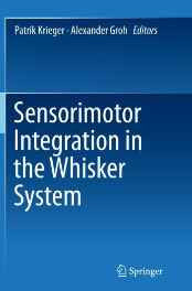 Sensorimotor Integration in the Whisker System Paperback – Import 28 Oct 2016-Books-sanapalas