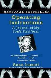 Operating Instructions: A Journal of My Son's First Year Paperback – 8 Mar 2005-sanapalas