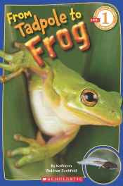 Scholastic Reader Level 1 - From Tadpole to Frog Paperback – 1 Feb 2011-sanapalas
