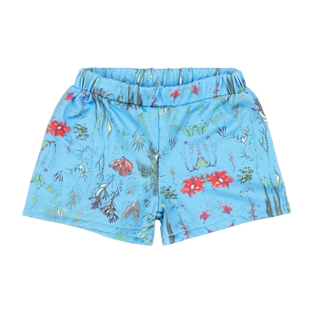Swim shorts for boys in blue base with underwater plant prints by EFVVA