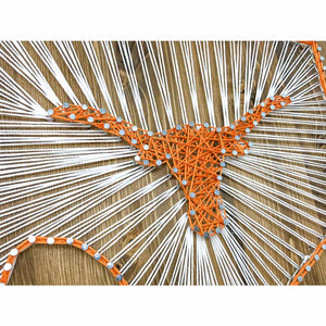 Texas Longhorns String Art Kit