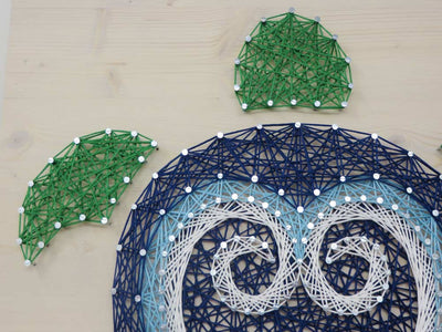 Turtle String Art Kit
