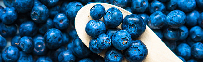 blueberries, antioxidants, skincare