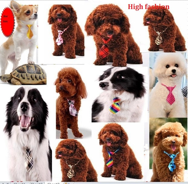 100pc/lot Factory Big Sale Dog Ties Pet Bow Ties Cat Neckties Dog Grooming Supplies can choose different color P10