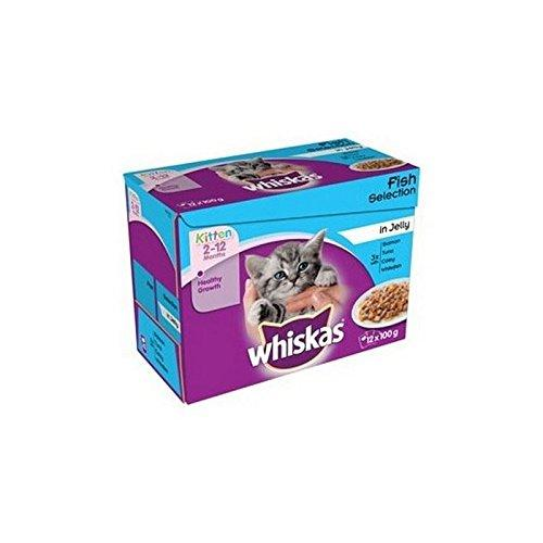 WHISKAS 2-12 Months Kitten Food Pouches Fish Selection in Jelly 12 x 100g (1.2kg) (Pack of 2)