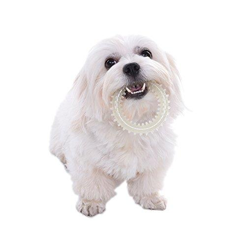--WIDEN Pet Chew Toy Ball TPR Small Thorn Circle Ball for Pets Glow in The Dark--