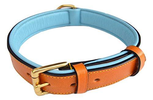 --Soft Touch Collars Leather Padded Dog Collar, Medium Tan and Teal , 20