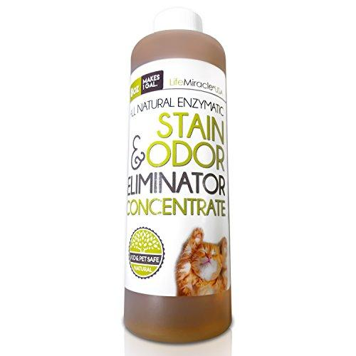 Enzyme Cleaner Concentrate Safe All Natural Carpet Cleaning And Laundry Stain Remover Odor Neutralizer All In One All Surface Non Toxic Cleaner