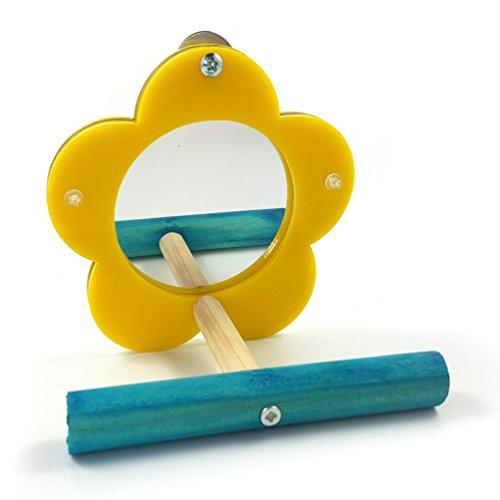 Wildgirl Parrot Toys Bird Mirror with Standing Perch Acrylic Training Toy (Flower)