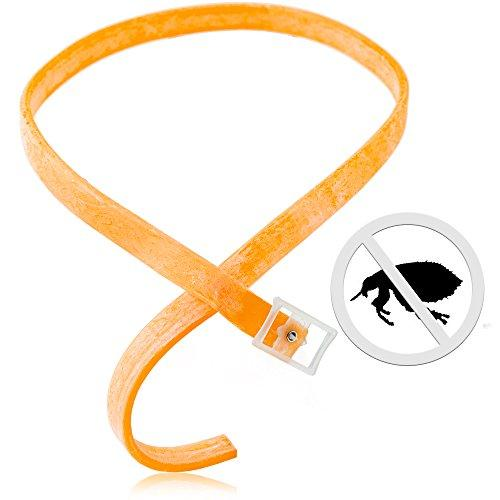 Flea and Tick Prevention Collar for Dogs Prevents and Treats Fleas Ticks 3 Month Protection (Orange)