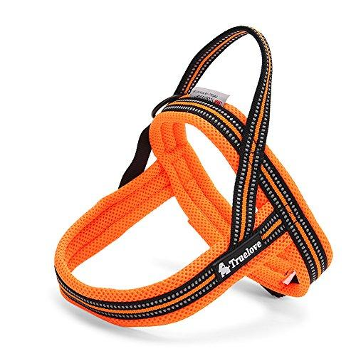 Vivi Bear Padded 3M Safety Reflective Dog Vest Harness Outdoor Travel Dog Behavior Training Walking Harness Pet Vehicle Safe Harness (XXXS (girth 14.2 to 17 inch), Orange)
