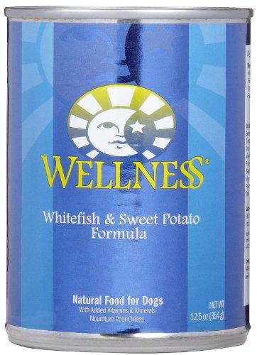 Wellness Complete Health Natural Wet Canned Dog Food - Whitefish & Sweet Potato Recipe - 12x12.5oz