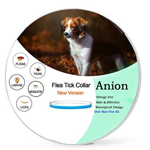 Flea and Tick Prevention for Dogs,Flea Collar for Dogs-Repellent Tick,Water-Resistant,8 Month Protection,One Size Fits All(New Version) (Dog-One Size Fits All)