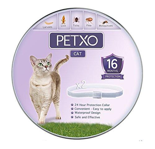 PETXO Cat Flea and Tick Collar, Adjustable and Waterproof Cats Flea Collar/ Cats Tick Collar, Flea And Tick Prevention For Cats, Lasts Up To 16 Months, One Size Fits All. 2 Grey Color Collars
