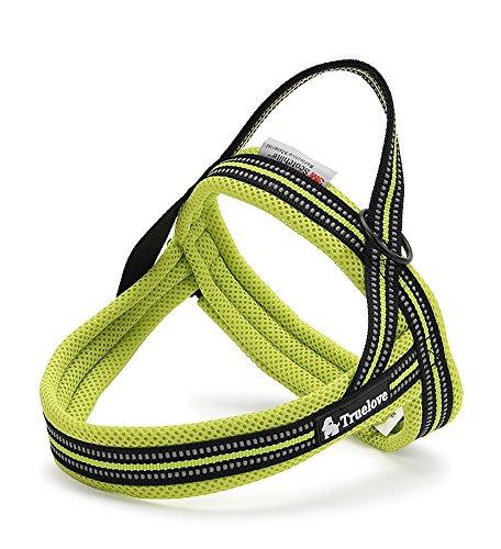 Vivi Bear Padded 3M Safety Reflective Dog Vest Harness Outdoor Travel Dog Behavior Training Walking Harness Pet Vehicle Safe Harness (XXS (girth 16.2 to 20.5 inch), Green)