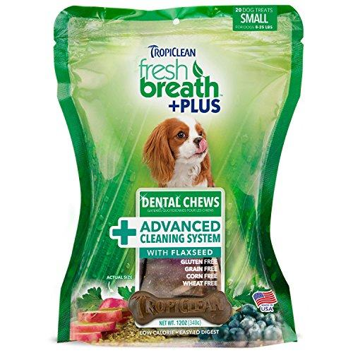 Tropiclean 20 Count Advanced Cleaning Dental Chews for Small Dogs