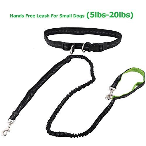 --Roysili Tiny Small Pet Hands Free Dog Leash, Premium Dual Handle Running Dog Leash, Lightweight Reflective Bungee Dog Leash for Mini Dogs--
