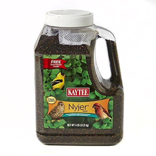 Kaytee Nyjer Bird Seed Jug with Sock, 4.65-Pound