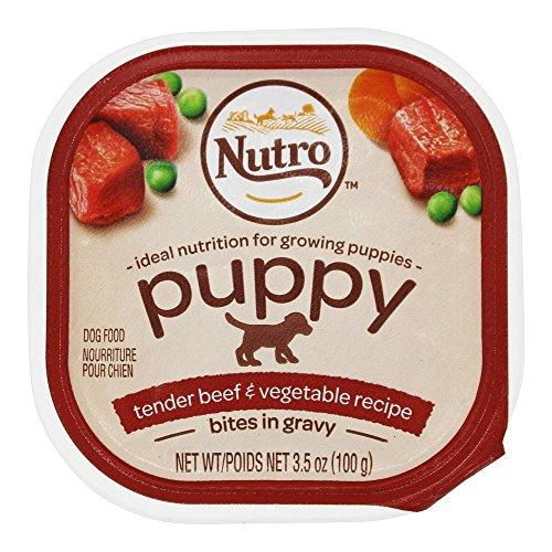 Natural Choice 11782 3.5 Oz, Beef & Vegetable Puppy Food