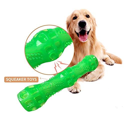 Yitour Puppy Chew Bone Rubber Toys sound, Dog Training Playing Dental Care Chewer with Gnawsome Squeaker Floatable Balls for Puppy Teeth Cleaning and Training Dogs,Cat—Green Stick