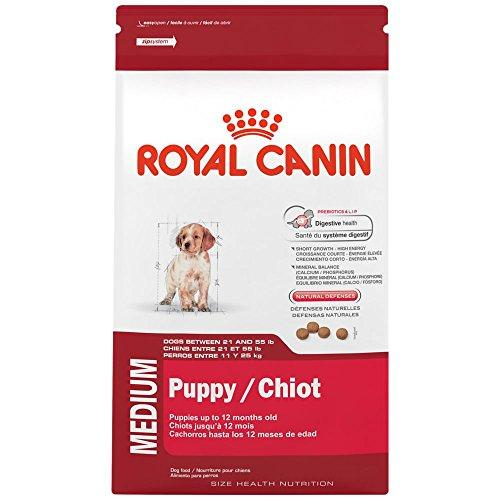 ROYAL CANIN HEALTH NUTRITION MEDIUM Puppy dry dog food, 6-Pound