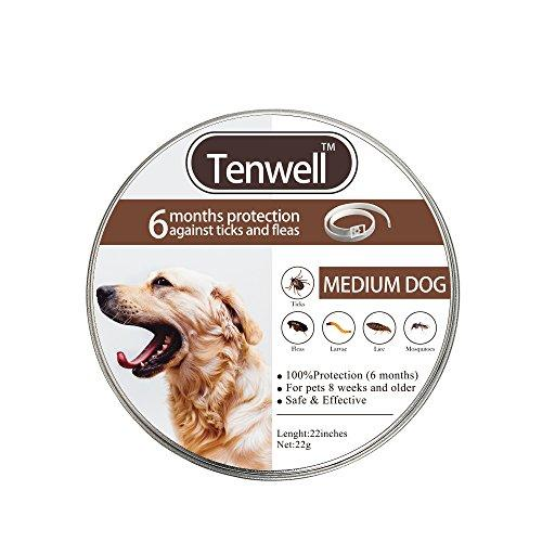 Dog Flea and Tick Collar Flea Prevention Collar 6 Month Protection Natural Essential Oils 22Inch Collar Ajustable for Fit