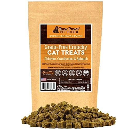 Raw Paws Pet Natural Grain Free Crunchy Cat Treats, 8-ounce - Chicken, Cranberries & Spinach - Made in USA Only - No Artificial Colors or Flavors - Cat Dental Treats - Healthy Treats for Cats