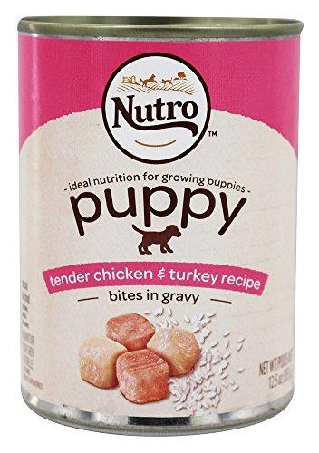 Nutro 50411577 Tender Chicken & Rice Recipe Can Large Breed Puppy Food, 12 EA/12.5oz