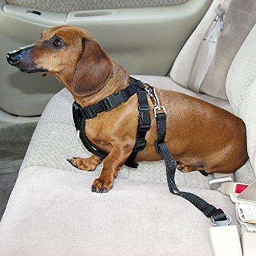 --Generic Dog Pet Novel Environment-Friendly Automotive Car Seat Safe Belt With Lobster Casp For Pet Dog Travel Safety Guard Adjustable Harness Attached Seat Belt--