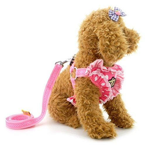 ZUNEA Pet Polka Dots Crown Adjustable Vest Harness Leash Set for Small Dog Cat Soft Mesh Padded No Pull Pink L