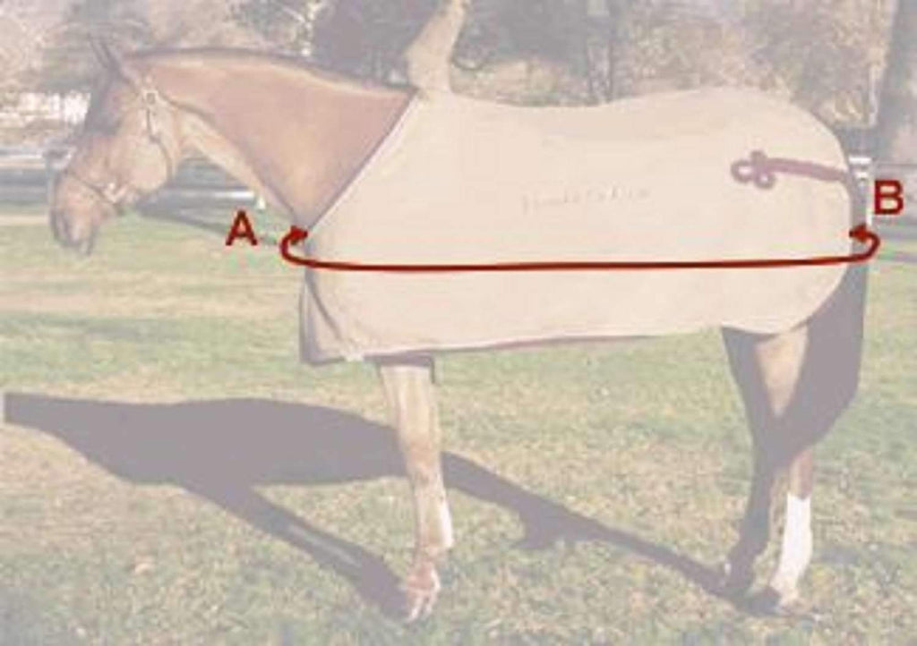 1680D TURNOUT HORSE WINTER WATERPROOF - HORSE BLANKET 007,,KeeboVet Veterinary Ultrasound Equipment,KeeboVet Veterinary Ultrasound Equipment.