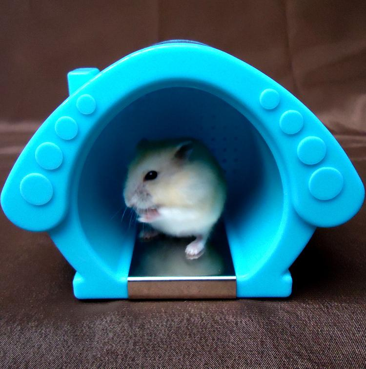 Cool Bird Cage room Hamster houses (complete with ice packs) small pet Hamster plastic litter in the box Hamster cage toys