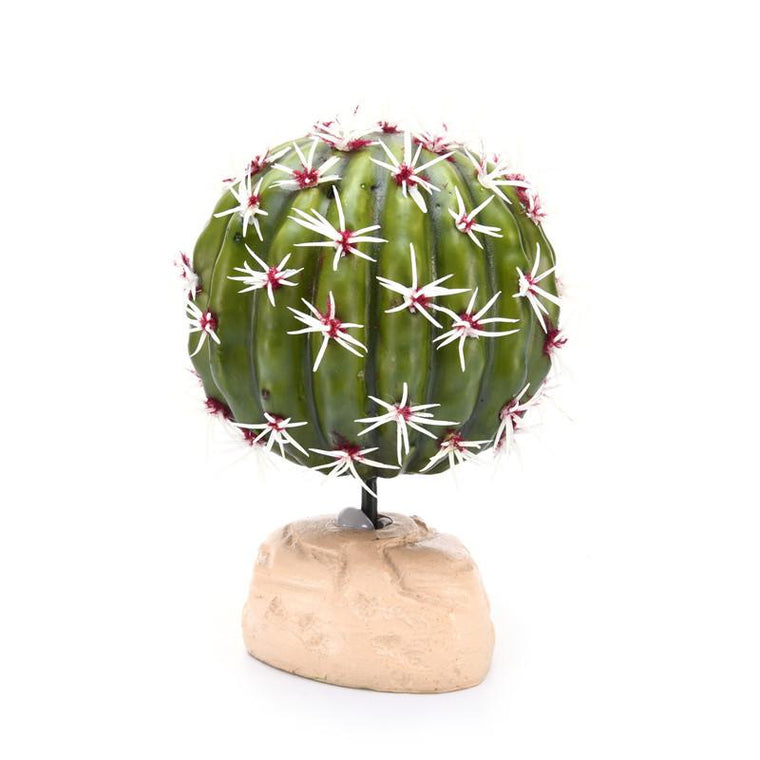 Pretty Reptile Cactus Ornaments Environmental Resin Simulation Ball Poisonless Amphibians Home Decorations Reptiles Supplies