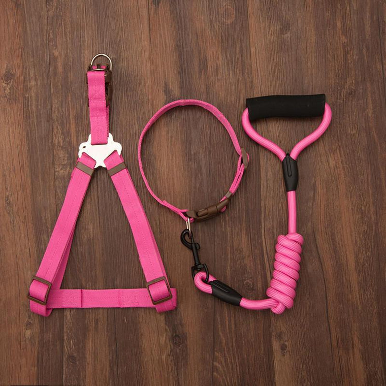 Sturdy And Durable Nylon Pet Large Dog Collars Leashes Harnesses Set For Medium Dog Harness Leashes Pet Set