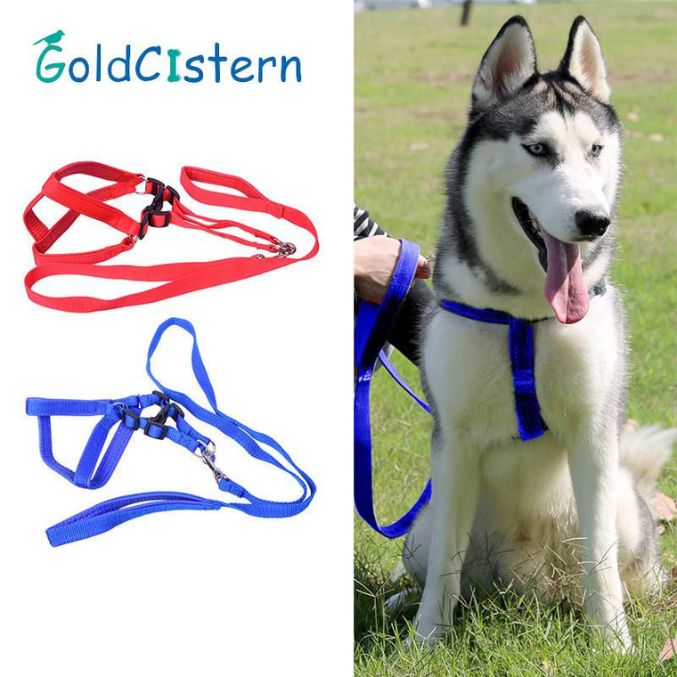 Top Selling Nylon Dog Puppy Harnesses Vest Adjustable Pet Cat Dogs Leash Collars Harness Collar Leads Leashes with 125cm Rope