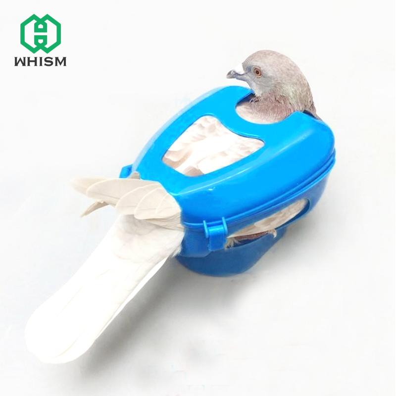 WHISM Pet Parrot Pigeon Fixers Bird Feeder Injection Infusion Birds Care Supplies Feeding Device Given Pigeon Drugs Medicine
