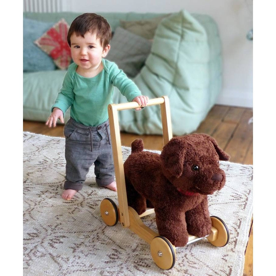 Peter Puppy Push Along Baby Walker - Hibba Toys of Leeds