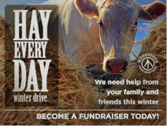 animal rescue/giving back – homestead body