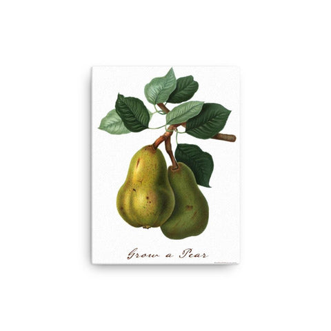 Grow a Pear Canvas