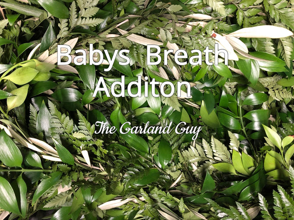 Babys Breath Addition