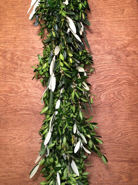 Boxwood and Olive Leaf Garland