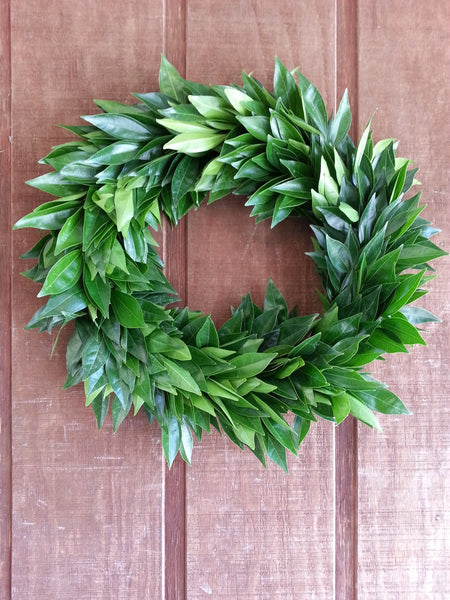 Cocculus Wreath