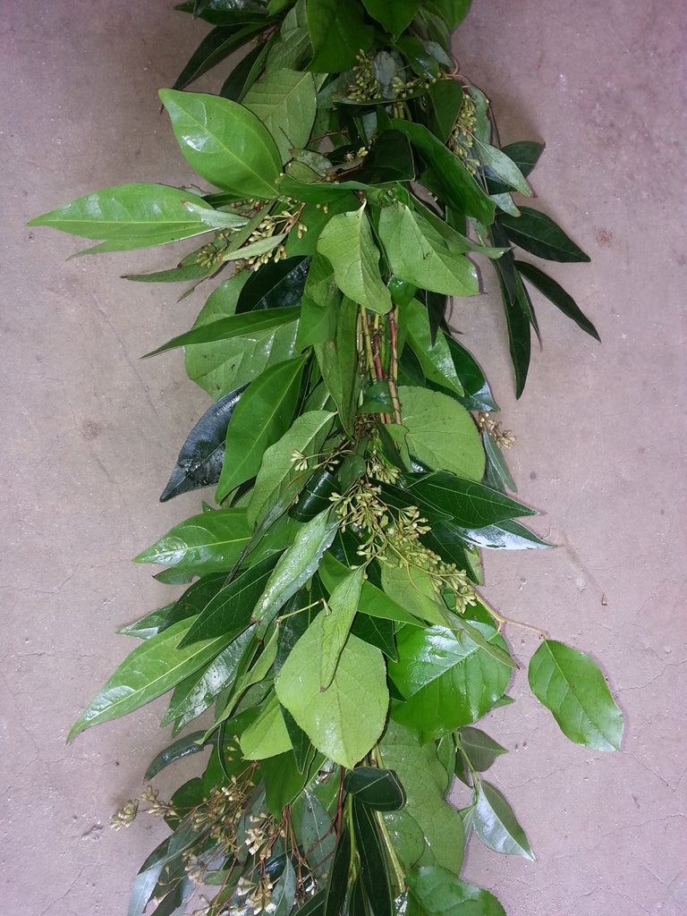 Cocculus, Salal, and Seeded Eucalyptus Garland