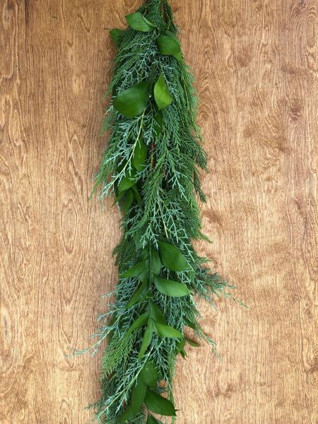 Leyland Cypress, Carolina Sapphire, and Israeli Ruscus Garland